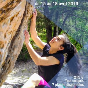 Stage fontainebleau 2019